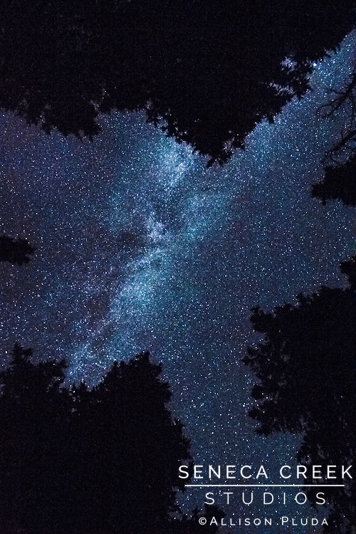 &quot;For my part I know nothing with any certainty but the sight of the stars makes me dream.&quot;<br />        - Vincent Van Gogh