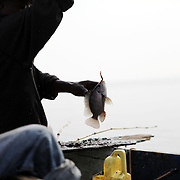 Siggando Francis holds up a Nile perch just caught in Lake Victoria. Here in Ggaba, a small town in southern Uganda that almost entirely subsists on the fishing industry, the locals have contributed to the dangerous overfishing of the lake despite strict regulations from Tanzania, Uganda, and Kenya. Fishermen continue to keep fish that are far below the required minimum weight and employ dymanite and poison.
