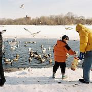 Feeding the birds in Prospect Park, Brooklyn. 2011