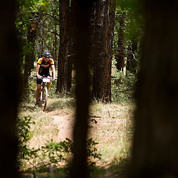 A racer spins a lap through the enchanted forest of pine trees.