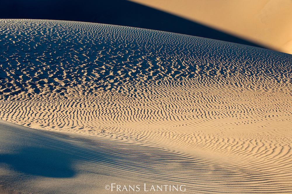 Sand dune patterns, Sperrgebiet National Park, Namibia