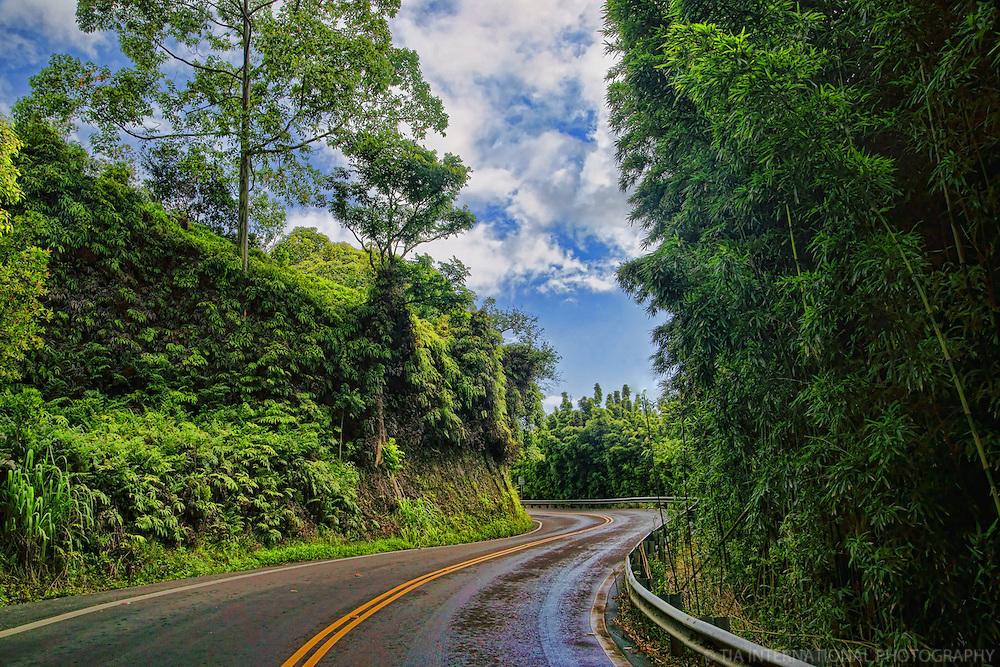 Road to Hana, Maui (#1)