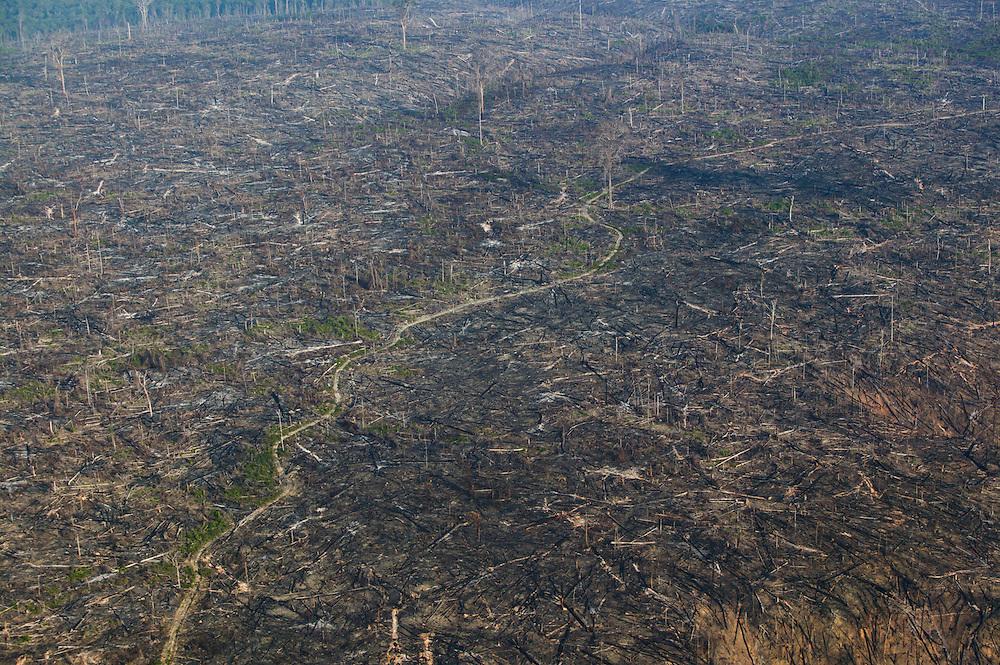Dec. 9, 2003. Above Para State, Brazil. Deforested land. ©Daniel Beltra