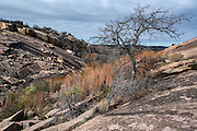 Enchanted Rock, north of Fredericksburg, Texas