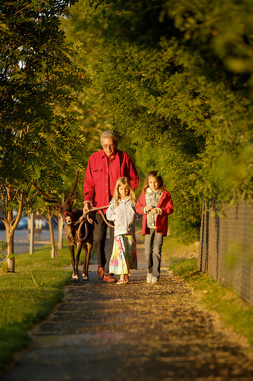 Spotting a caribou on the streets of Anchorage may not be as unusual as one may think. During the summer months, Star and her care-taker, Albert Whitehead and his grandchildren, Amanda and Jenna Seaman, can be spotted walking start through Anchorage's downtown neighborhoods.