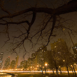 Night falls on the city of Chicago, as a barren winter tree hangs over the skyline as seen from North Avenue beach.