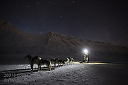 08: LONGYEARBYEN DOG SLEDDING