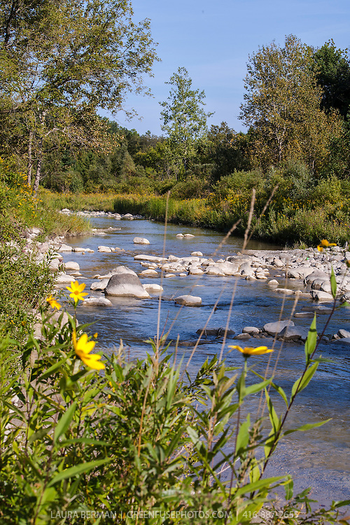 Little Rouge Creek in Toronto's Rouge Park in late summer
