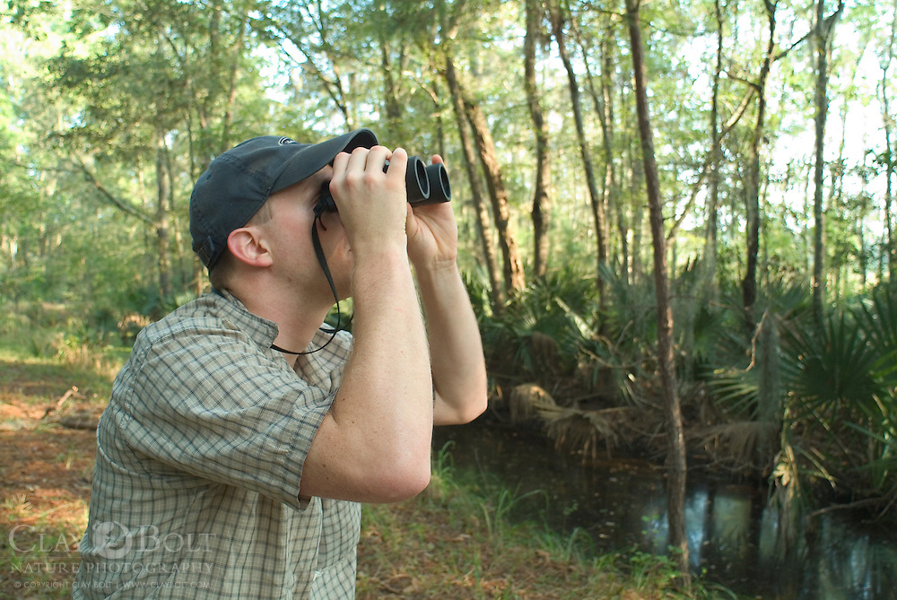 Birdwatching is a very popular activity in coastal South Carolina. The A.C.E. Basin is an amazing coastal wetland system in SC that is comprised of thousands of protected acres due to the efforts of concerned citizens and lawmakers. It is incredibly important as a nesting ground and migration point for many species of birds.