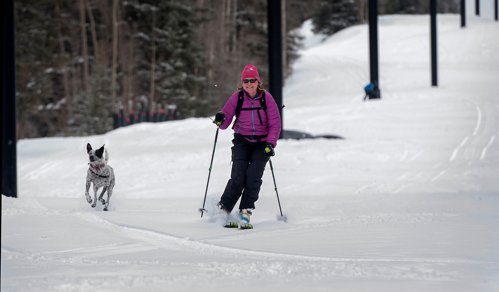 em040417d/metro/The ski area closed 2 days ago but the ski season is not over. Vibeke Wilberg, from Santa Fe, and her dog Smokey, come down a run at Ski Santa Fe, Tuesday April 4, 2017. Dozens of people were skiing and snowboarding the runs after several inches of fresh snow fell on the area.  (Eddie Moore/Albuquerque Journal