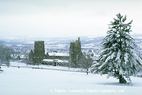 The Cornell campus in Ithaca, New York, in the wintertime, particularly after a snow storm, looks like this with a far view of West Hill behind the Libe Slope.