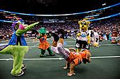 SPORTS - Mascot Games
