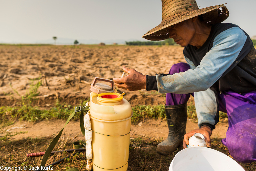 24 APRIL 2014 - CHIANG SAEN, CHIANG RAI, THAILAND:  JANG, a corn farmer in Chiang Saen, Thailand, tends to his newly planted corn field in a flood plain on the Mekong River in Chiang Rai province. Chiang Rai province in northern Thailand is facing a drought this year. The 2014 drought has been brought on by lower than normal dry season rains. At the same time, closing dams in Yunnan province of China has caused the level of the Mekong River to drop suddenly exposing rocks and sandbars in the normally navigable Mekong River. Changes in the Mekong's levels means commercial shipping can't progress past Chiang Saen. Dozens of ships are tied up in the port area along the city's waterfront.                   PHOTO BY JACK KURTZ