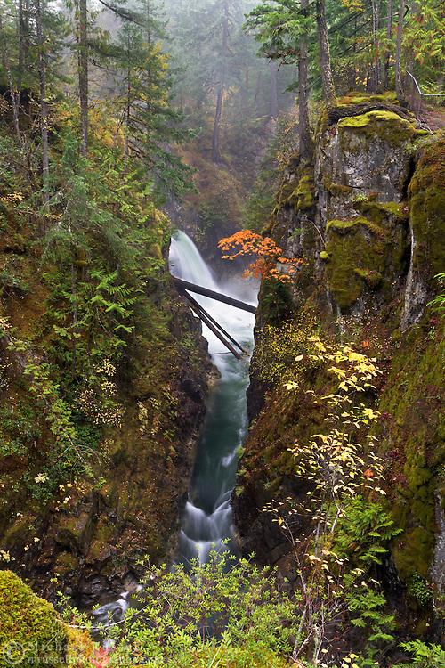 Side view of the Upper Little Qualicum Falls at Little Qualicum Falls Provincial Park in the Nanaimo Regional District, British Columbia, Canada