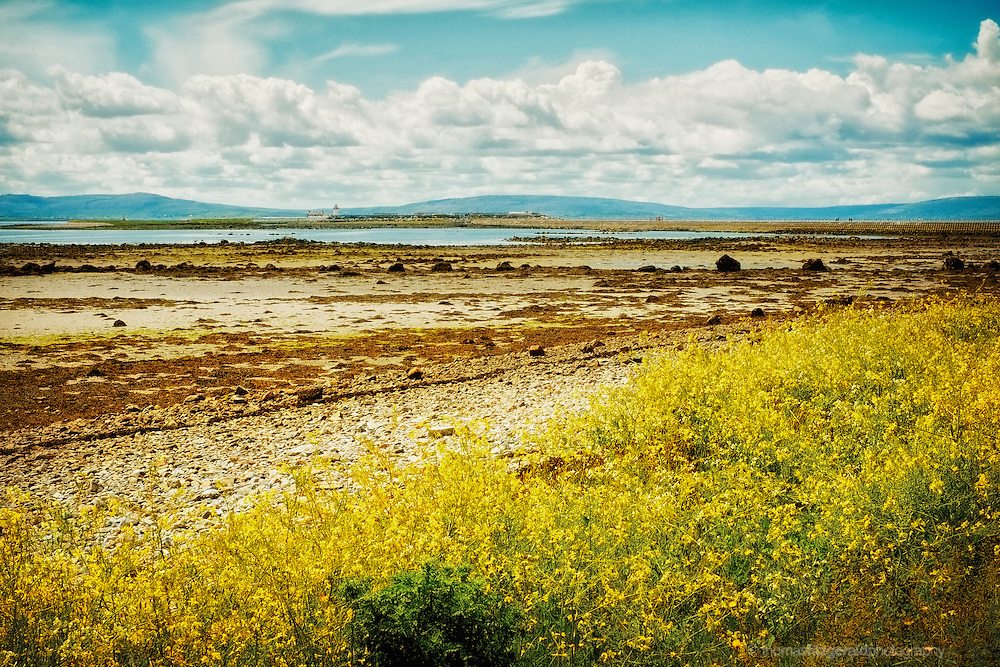 Galway, Ireland, 2012: A Low tide leaves an exposed beach covered with sea weed gently rolling out to the sea and mountains in the distance. A lone lighthouse guards the enterance to Galway Bay