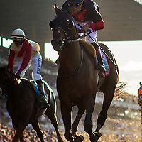 June 07, 2014: Tonalist with Joel Rosario wins the Belmont Stakes ending California Chrome's bid at a Triple Crown at Belmont Park in Elmont New York. Alex Evers/ESW/CSM