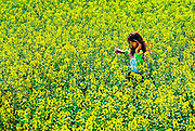 A girl walks through the beautiful canola fields of Luoping, Yunnan, China.