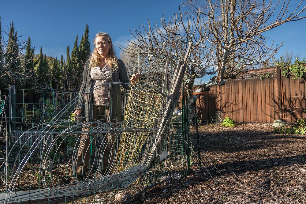 Calistoga master gardener Rachelle Benney begins work in her vegetable garden.