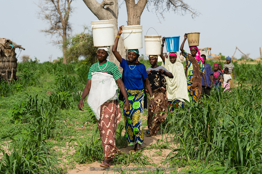 Women carrying water home from a WaterAid pump in the village of Kanwa-Maraki in the Zinder Region of Niger on 25 July 2013.