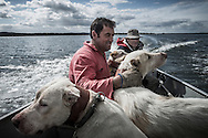 &quot;Berras&quot; and his tracking dogs. Montaria na Herdade da Serranheira, Fevereiro 2014.<br /> <br /> &quot;The Pose and the Prey&quot;<br /> <br /> Hunting in my imagination was always more like taxidermy &mdash; as if the prey was just a mere accessory of the hunter's pose for his heroic photograph &mdash; the real trophy.<br /> <br /> When I decided to document the daily lives of Portuguese hunters, I had in my memory the &quot;clich&eacute;&quot; from the photographer Jos&eacute; Augusto da Cunha Moraes, captured during a hippopotamus hunt in the River Zaire, Angola, and published in 1882 in the album Africa Occidental. The white hunter posed at the center of the photograph, with his rifle, surrounded by the local tribe.<br /> <br /> It was with this clich&eacute; in mind that I went to Alentejo, south of Portugal, in search of the contemporary hunters. For several months I saw deer, wild boar, foxes. I photographed popular hunting and private hunting estates, wealthy and middle class hunters, meat hunters and trophy hunters. I photographed those who live from hunting and those who see it as a hobby for a few weekends during the year. I followed the different times and moments of a hunt, in between the prey and the pose, wine and blood, the crack of gunfire and the murmur of the fields .<br /> <br /> I was lucky, I heard lots of hunting stories. I found an essentially old male population, where young people are a minority. Hunters, a threatened species by aging and loss of economic power caused by the crisis in the South of Europe.<br /> <br /> The result of this project is this series of contemporary images, distant from the &quot;cliche&quot; of 1882.<br /> <br /> &mdash; Antonio Pedrosa