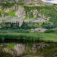 Reflection of Grizzly peak in basin pond. San Juan National Forest
