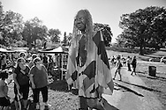 The Solstice Festival was photographed  Saturday, June 21, 2014, in Olbrich Park in Madison, Wisconsin. Including the Procession Of The Species: Giant Puppet Parade.