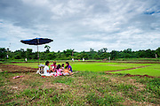 Siri feeds her grandchildren breakfast in the rice fields so she can watch the fields and keep the birds out of the young rice plants. Nakhon Nayok, Thailand.
