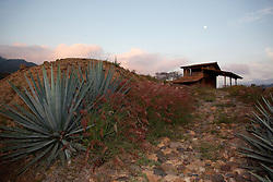 """Agave Sunset"" - This sunset, moon and agave plant were photographed at Parador San Sebastian, Mexico."