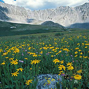 Mayflower Gulch, Tenmile Range, Colorado