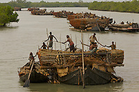 Charcoal wood collectors with boats loaded with Goran wood (Ceriops sp.) harvested from the mangrove forest.