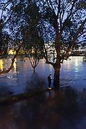 Paris . Flooding . The Seine river  at  the quay de la Tournelle