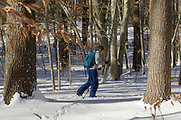 Russell Laman cross country skiing in the New England countryside.