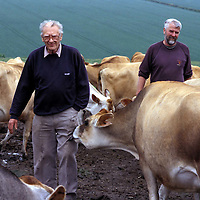 Photo (c) Steve Forrest/Insight.date: June 2003..George Trenouth & his son Richard at Trevone farm, Padstow, Cornwall