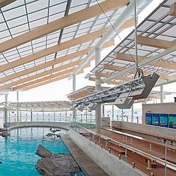 Marine Mammal Center at the New England Aquarium, Boston Massachusetts  .Architect:  McManus Architects, Inc. Cambridge, MA.Not Released