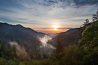 After a thunderstorm passes through the Smokies, the backlit mist left behind rises from the valley.