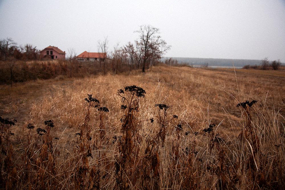 Burnt vegetation in the Serbian town of Prahovo..Matt Lutton for the Financial Times