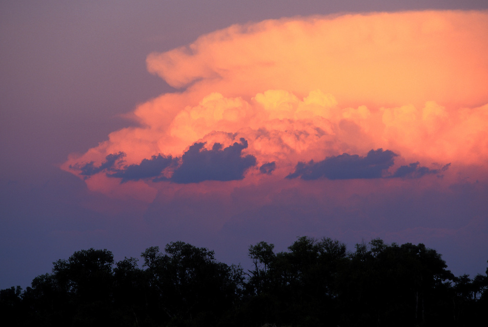 Africa, Botswana, Moremi Game Reserve, Setting sun lights storm clouds above mopane forest in Okanvango Delta