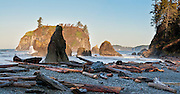 Ruby Beach: Abbey Island, sea stacks, surf, driftwood, coastal forest, Cedar Creek, in Olympic National Park, Washington, USA. Panorama stitched from 2 images.