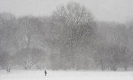 A man walks in the snow in Central Park in New York, New York, USA, on 02 March 2009.