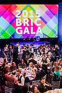 ALL PHOTOS ~ BRIC Gala 2015