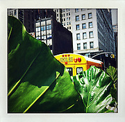 New York City iPhone image .app: shakeitphoto..Foto: Stefan Falke.
