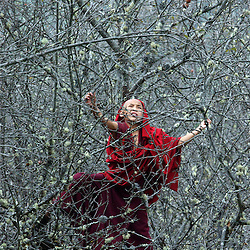 A Monk tries to get the last pears out of a tree in Bhumthang, Bhutan October 18, 2005. (Ami Vitale)