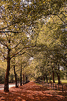 Green Park is a park in the City of Westminster, central London. One of the Royal Parks of London, it covers 19 hectares (47 acres) and it meets St. James's Park at Queen's Gardens with the Victoria Memorial at its centre, opposite the entrance to Buckingham Palace.