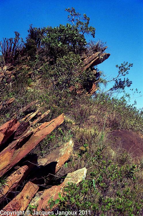 Serra do Espinhaco, Brazilian Highlands, Brazilian Shield, Minas Gerais State, Brazil: pre-cambrian (proterozoic) sedimentary metamorphic rocks: quartzites, with saxicolous vegetation (campos rupestres).