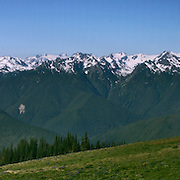 Panorama of the Mount Olympus area of the Olympic Mountains from the Hurricane Ridge visitors' center in the Olympic National Park