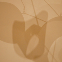 National Gallery, Washington DC, Calder Collection. Close-up of mobile shadows.