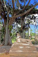 Sphinx in Parque Nacional la Guira, Pinar del Rio Province, Cuba.