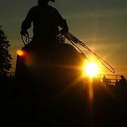 2009 Excalibur Rodeo