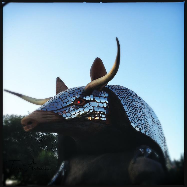 Giant armadillo - Houston, Texas