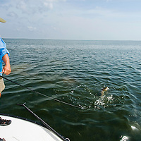 Sight fishing the Laguna Madre off the Texas Gulf Coast.